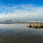 Picture - Tidal pool in Olympic National Park, Washington.