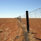 Picture - Dingo fence in the Australian Outback.