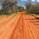 Picture - Dirt track in the Sturt Desert, Outback.