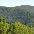 Picture - View over the Palatinate Forest.