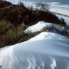 Picture - Sand dunes at Panama City Beach.