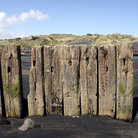 Picture - Posts in a black sand beach at Patea.