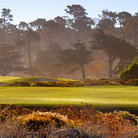 Picture - View of golf course in Pebble Beach.