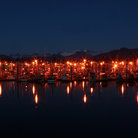 Picture - Lights of the south harbor at night in Petersburg.