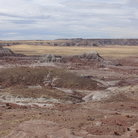 Picture - Jasper Forest in Petrified Forest National Park.