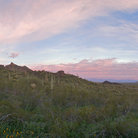 Picture - Early morning view of the landscape at Picacho Peak State Park.