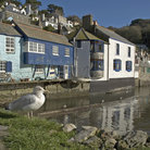 Picture - Blue buildings along the harbor at Polperro.