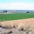 Picture - Farm fields near Pompeys Pillar National Monument.
