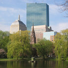 Picture - Boston Skyline from the Public Garden.