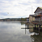 Picture - Coupville Stores on piers in Puget Sound.
