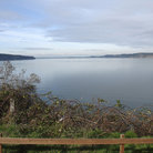 Picture - Puget Sound from Steilacoom, Washington.