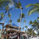 Picture - Buildings and palm trees at Punta Cana.