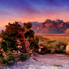 Picture - Colorful sky over Red Rock Canyon.