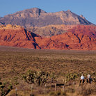 Picture - Horseback riding at Red Rock Canyon National Conservation Area.
