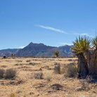 Picture - Desert landscape in Red Rock Canyon National Conservation Area.