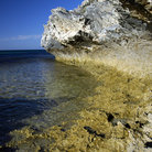 Picture - Coastline at Rottnest Island.