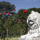 Picture - A lion statue and flowers at the Royal Botanical Gardens in Sydney.