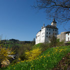 Picture - Summer view of the Rozmberk nad Vltavou Castle.
