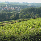 Picture - Sancerre and the surrounding rolling hills.