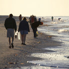Picture - Shell picking on Sanibel Island.