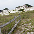 Picture - Sand Dunes at Grayton Beach State Park.