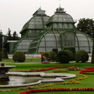 Picture - The Palm House in Vienna.