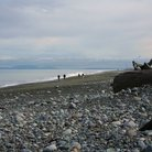 Picture - People walking the beach at Sequim.