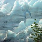 Picture - Detail of a glacier at Seward.