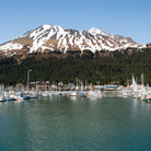 Picture - Resurrection Bay Marina.