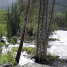 Picture - White water on the Crazy Creek in Shoshone National Forest.