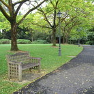 Picture - Scene from Singapore Botanical Gardens.