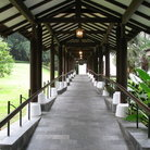 Picture - Pathway of Singapore Botanical Gardens.