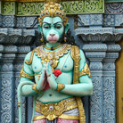 Picture - Detail of Hanuman the monkey god statue in a Indian Hindu temple in Singapore.