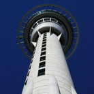 Picture - Looking up the Sky Tower in Auckland.
