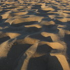 Picture - Sand dunes at Sleeping Bear Dunes National Lakeshore.