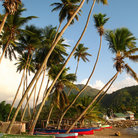 Picture - Palm trees and boat at Soufriere.