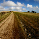 Picture - The landscape of South Downs Way.
