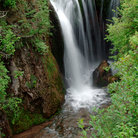 Picture - A waterfall in the lush surroundings of Spearfish Canyon.