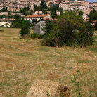 Picture - Hay bale outside Spello.