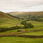 Picture - Green fields at Swaledale, North Yorkshire.