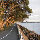 Picture - View along Tamaki Drive, Auckland.