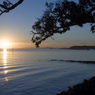 Picture - View from Tamaki Drive at sunrise, Auckland.
