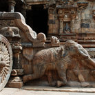Picture - Stone elephant at Darasuram Temple.