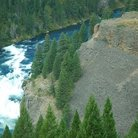Picture - Lower Mesa Falls in Targhee National Forest.