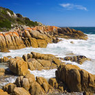 Picture - The rugged coastline of Tasmania.