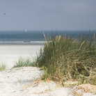 Picture - Sand dunes near the Isle of Terschelling.