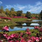 Picture - Mirror Lake at Bellingrath Gardens in Theodore, AL.