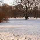 Picture - Tiergarten at winter time, Berlin.