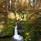 Picture - A water fall in the forest of Tierra del Fuego National Park.