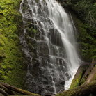 Picture - University Falls in Tillamook State Forest.